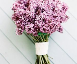flowers, lilac, and pink image