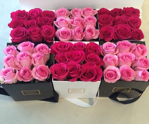 bouquets, pink, and red image