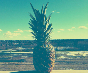pineapple, summer, and background image