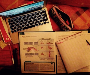 macbook, medicine, and studying image