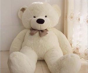 bear and love image