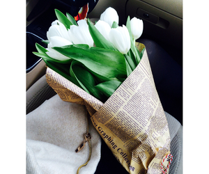 tulips and love image