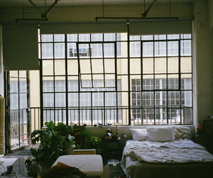 apartment, plants, and bed image