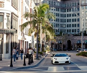 car, luxury, and palm trees image