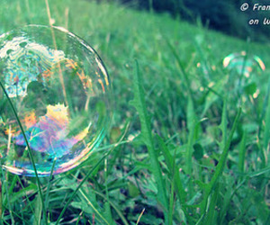 bubbles, grass, and nature image