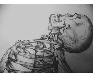 drawing, art, and bones image