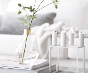 interior, white, and flowers image