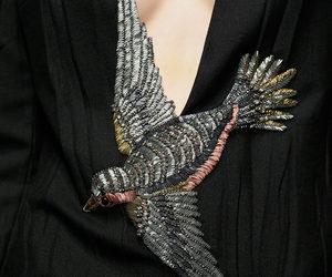 bird and fashion image