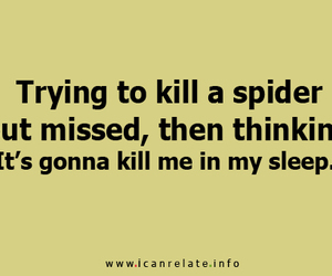 funny, spider, and quote image