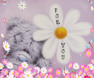 flowers, pink, and tatty teddy image