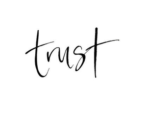 quote, trust, and words image