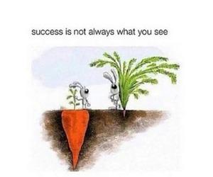 quote, success, and true image