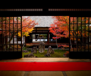 japan, kyoto, and Temple image