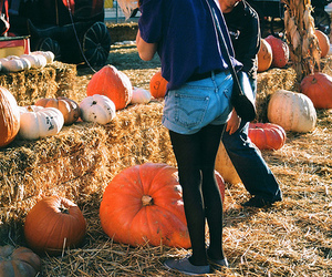 girl, pumpkin, and hipster image