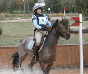 cheval, competition, and cross image