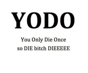 yodo, bitch, and die image