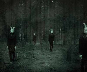 rabbit, forest, and creepy image