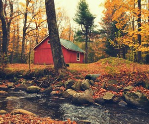 autumn, forest, and house image