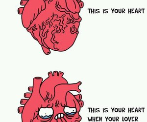 broken heart, crush, and funny image