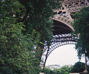 eiffel tower, paris, and tree image