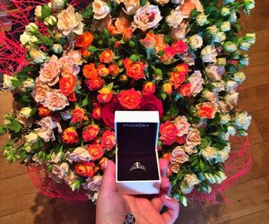 roses, luxury, and pandora image