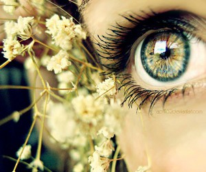 beautiful, eyes, and floral image