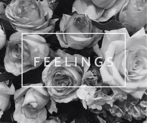 feelings, black and white, and rose image
