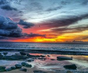 Aloha, beach, and beach love image
