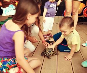 animal, babies, and baby image