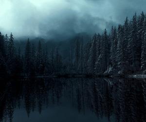 fog, nature, and dark image