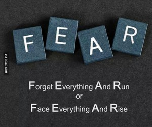 fear, quotes, and run image