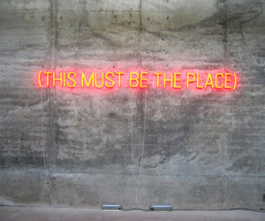 light, neon, and place image