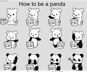 cool and panda!!! image