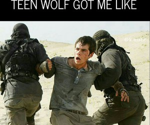 meme, teen wolf, and dylan o'brien image