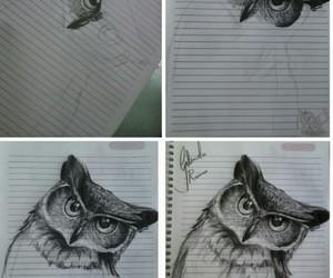 animals, art, and b&w image