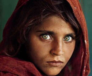 eyes, green eyes, and national geographic image