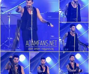 adam, concert, and Hot image