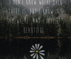 alaska, quotes, and flowers image