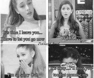 cat, miss you, and ariana grande image