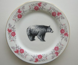 bear, plate, and vintage image