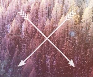 trees image