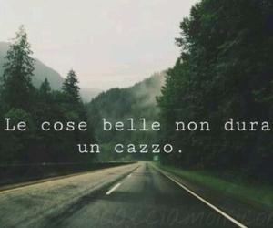 cazzo and frasi italiane image