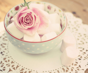 rose, flowers, and marshmallow image