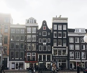 amsterdam, city, and hipster image