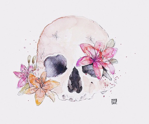 drawing, flowers, and skull image