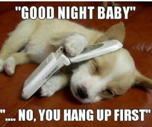 good night and puppy love image