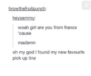 french, funny, and hilarious image