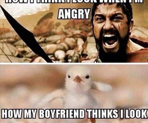 funny, boyfriend, and angry image