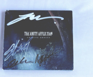 bands, pale, and the amity affliction image