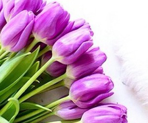 beautiful, bouquet, and life image